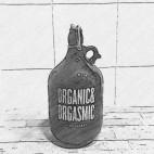 Garrafa 2 litros - GROWLER
